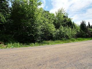 Terrain à vendre à Saint-Joachim, Capitale-Nationale, 1, Rue  Bellevue, 24982051 - Centris.ca