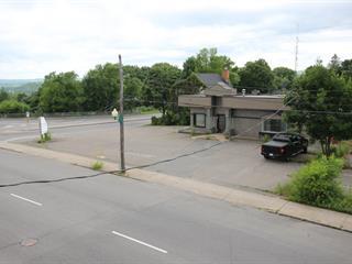 Bâtisse commerciale à vendre à Shawinigan, Mauricie, 1413, Avenue  Saint-Marc, 17970054 - Centris.ca