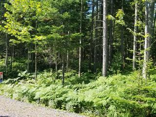 Lot for sale in Montmagny, Chaudière-Appalaches, Route  Trans-Comté, 9125602 - Centris.ca