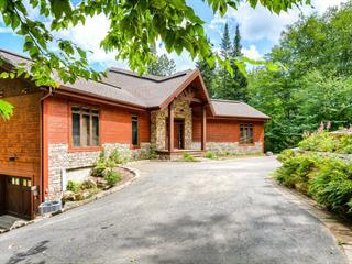 House for sale in Mont-Tremblant, Laurentides, 451, Chemin du Lac-Mercier, 15473609 - Centris.ca