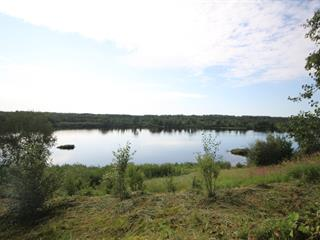 Lot for sale in Saint-Stanislas (Saguenay/Lac-Saint-Jean), Saguenay/Lac-Saint-Jean, 4, Rang  Alphonse, 22249602 - Centris.ca