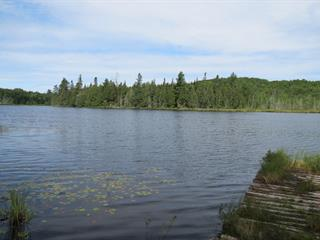 Cottage for sale in Ferme-Neuve, Laurentides, 1, Lac  Rinzo, 21049794 - Centris.ca