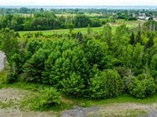 Lot for sale in Gatineau (Aylmer), Outaouais, Chemin  McConnell, 14078599 - Centris.ca