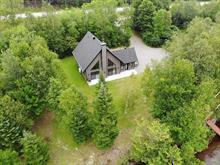 House for sale in Saint-Roch-de-Mékinac, Mauricie, 431, Route  Ducharme, 15470957 - Centris.ca