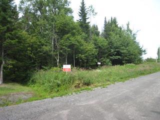 Lot for sale in Percé, Gaspésie/Îles-de-la-Madeleine, Route  Mélicia, 18835130 - Centris.ca