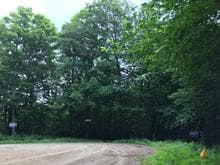 Lot for sale in Saint-Adolphe-d'Howard, Laurentides, Chemin  Forest Hill, 23941091 - Centris.ca
