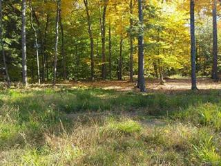Lot for sale in Bristol, Outaouais, 3-5 A 7, Avenue  MacFarlane, 18572425 - Centris.ca