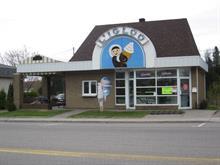 Bâtisse commerciale à vendre à La Baie (Saguenay), Saguenay/Lac-Saint-Jean, 2143, Rue  Bagot, 11903057 - Centris.ca