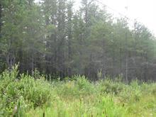 Terre à vendre à Launay, Abitibi-Témiscamingue, Route  111, 28990304 - Centris.ca