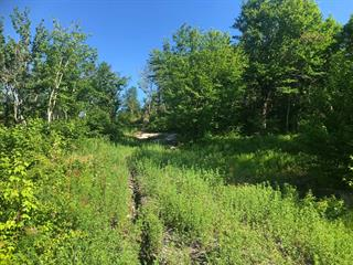 Land for sale in Lac-Beauport, Capitale-Nationale, Chemin du Moulin, 19335418 - Centris.ca