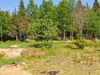 Lot for sale in Port-Cartier, Côte-Nord, 4612, Rue des Pionniers, 27311969 - Centris.ca