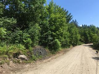 Terre à vendre à La Pêche, Outaouais, 367, Chemin  Clark, 13391530 - Centris.ca