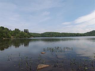 Lot for sale in Boileau, Outaouais, Chemin du Lac-Champagneur, 23756776 - Centris.ca