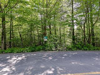 Lot for sale in Gore, Laurentides, Chemin  Braemar, 13783643 - Centris.ca