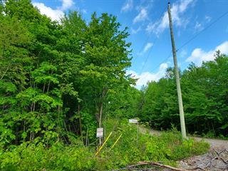 Terrain à vendre à Chertsey, Lanaudière, Rue du Sommet, 9293031 - Centris.ca