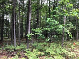 Lot for sale in Bristol, Outaouais, 12, Rue  Pinehurst, 23817306 - Centris.ca