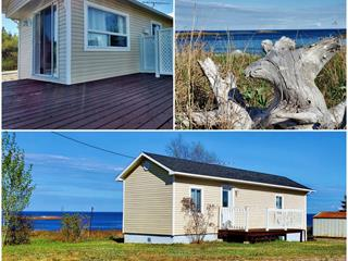 House for sale in Port-Cartier, Côte-Nord, 4508, Rue des Pionniers, 9500465 - Centris.ca
