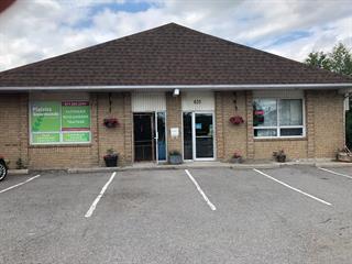 Commerce à vendre à Gatineau (Gatineau), Outaouais, 835, Rue  Saint-Louis, 11982479 - Centris.ca