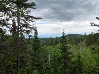 Land for sale in Lac-Beauport, Capitale-Nationale, Chemin du Moulin, 19117235 - Centris.ca