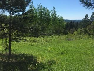 Lot for sale in Sainte-Anne-des-Monts, Gaspésie/Îles-de-la-Madeleine, Route  Lavoie, 17083290 - Centris.ca