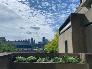 Condo / Apartment for rent in Montréal (Ville-Marie), Montréal (Island), 2600, Avenue  Pierre-Dupuy, apt. 227, 18703792 - Centris.ca