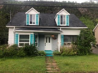 House for sale in Petit-Saguenay, Saguenay/Lac-Saint-Jean, 109, Rue  Dumas, 17994993 - Centris.ca