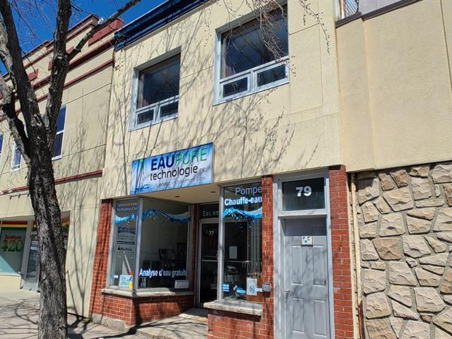 Immeuble à revenus à vendre à Rouyn-Noranda, Abitibi-Témiscamingue, 77 - 79, Rue  Perreault Est, 10999320 - Centris.ca