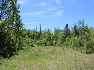 Terrain à vendre à Gore, Laurentides, Chemin du Lac-Chevreuil, 26029817 - Centris.ca