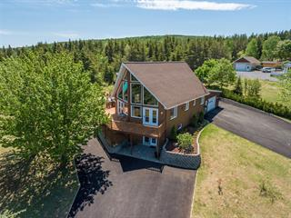 House for sale in La Malbaie, Capitale-Nationale, 89, Rang  Sainte-Madeleine, 26742549 - Centris.ca