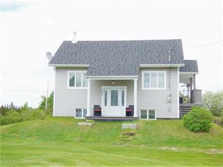 Maison à vendre à Saint-Prime, Saguenay/Lac-Saint-Jean, 844, Rue  Principale, 18609028 - Centris.ca