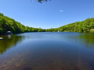 Lot for sale in Chénéville, Outaouais, Chemin de la Montagne, 15374028 - Centris.ca