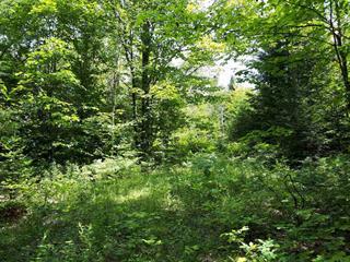 Lot for sale in Sainte-Anne-des-Lacs, Laurentides, Chemin  Godefroy, 22512140 - Centris.ca