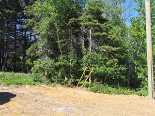 Lot for sale in Saint-Siméon (Capitale-Nationale), Capitale-Nationale, Rue de la Fabrique, 27493670 - Centris.ca