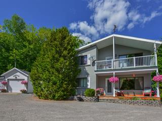 Maison à vendre à Saint-Donat (Lanaudière), Lanaudière, 847, Chemin  Ouareau Nord, 24767465 - Centris.ca