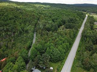 Terrain à vendre à Orford, Estrie, Chemin  Alfred-DesRochers, 14606473 - Centris.ca