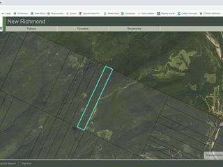 Land for sale in New Richmond, Gaspésie/Îles-de-la-Madeleine, Rang 8, 10232063 - Centris.ca