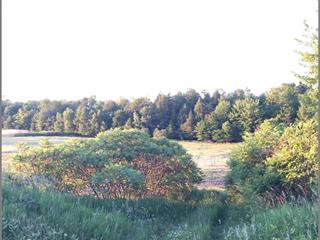 Land for sale in Gatineau (Masson-Angers), Outaouais, Rue  Carniel, 12417694 - Centris.ca
