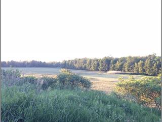 Terre à vendre à Gatineau (Buckingham), Outaouais, Avenue de Buckingham, 13616451 - Centris.ca