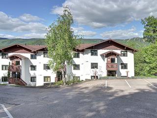 Condo / Apartment for rent in Mont-Tremblant, Laurentides, 211, Chemin de Lac-Tremblant-Nord, apt. 486, 14413241 - Centris.ca