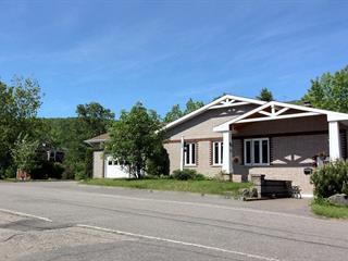 House for sale in L'Anse-Saint-Jean, Saguenay/Lac-Saint-Jean, 20, Chemin  Saint-Thomas Sud, 28940208 - Centris.ca