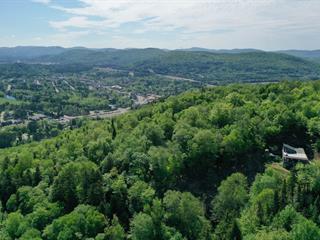 Lot for sale in Mont-Tremblant, Laurentides, Chemin du Grand-Pic, 25393108 - Centris.ca