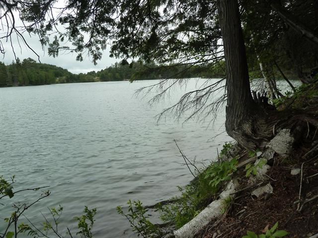 Terre à vendre à Thorne, Outaouais, Chemin  Hounds Head, 21080799 - Centris.ca