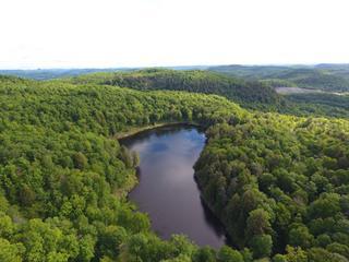 Terre à vendre à Grenville-sur-la-Rouge, Laurentides, Chemin du Lac-Otter, 27568606 - Centris.ca