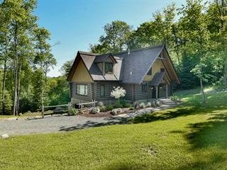Maison à vendre à Mont-Tremblant, Laurentides, 480, Allée  Paisible, 24447584 - Centris.ca