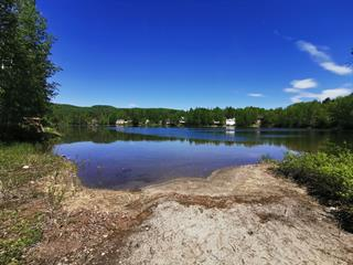 House for sale in Saint-David-de-Falardeau, Saguenay/Lac-Saint-Jean, 8 - B, Chemin du Lac-Munger, 26239415 - Centris.ca