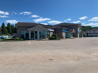 Commercial unit for rent in Saguenay (La Baie), Saguenay/Lac-Saint-Jean, 3053, Rue  Monseigneur-Dufour, 12150710 - Centris.ca