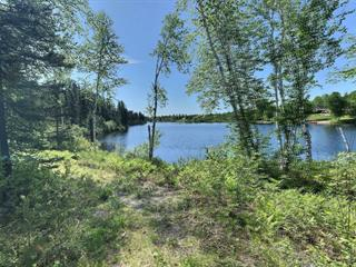 Lot for sale in Saint-Ludger-de-Milot, Saguenay/Lac-Saint-Jean, 1, Avenue  Lévesque, 12042379 - Centris.ca