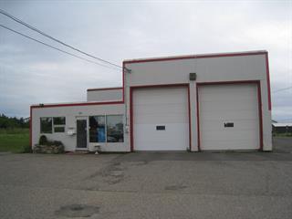 Bâtisse commerciale à vendre à Matane, Bas-Saint-Laurent, 50, Rue  Émile-Pinel, 26620624 - Centris.ca