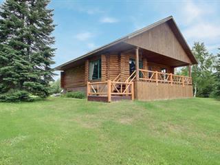 Chalet à vendre à Senneterre - Paroisse, Abitibi-Témiscamingue, 469 - B, Route  113 Sud, 15761002 - Centris.ca