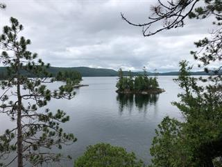 Lot for sale in Lac-du-Cerf, Laurentides, Chemin de la Passe, 15335311 - Centris.ca
